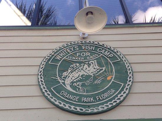 Orange Park, FL: photo0.jpg