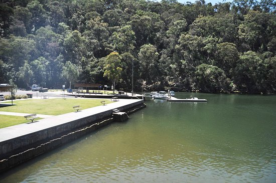Berowra Waters Fish Cafe: view west overlooking the pak.