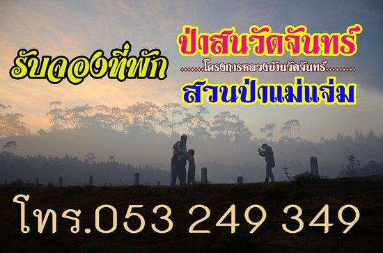 Galyani Vadhana, Tajlandia: รับจองห้องพัก