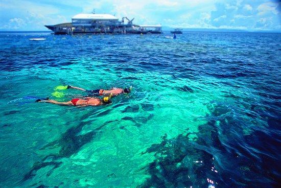 Quicksilver Cruises Port Douglas Australia Top Tips