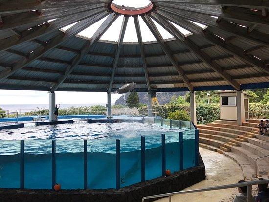 Sea Life Park Hawaii: photo7.jpg