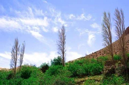 M'Sila Province, Algieria: منطقة قمرة بلدية عين الريش ولاية المسيلة مكان جميل للباحثين عن المتعة والراحة .