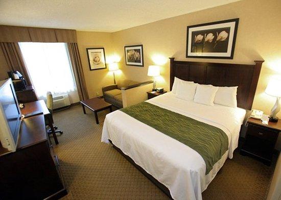 Comfort Inn & Suites Paramus: Standard Suite