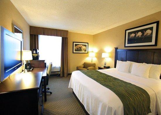 Paramus, نيو جيرسي: Standard King Room