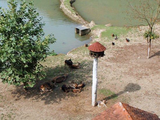 Nature Park Zumberak
