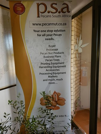 Hartswater, Afrique du Sud : Of course pecans are also there