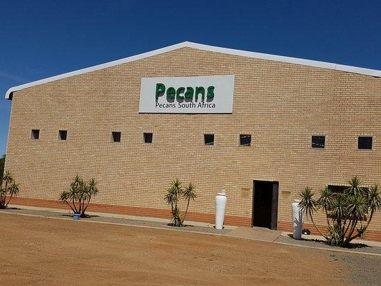 Hartswater, Afrique du Sud : Pecan place