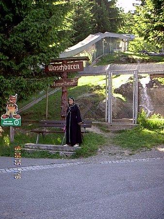 Oberried, Tyskland: My wife Sabiha visiting animals.