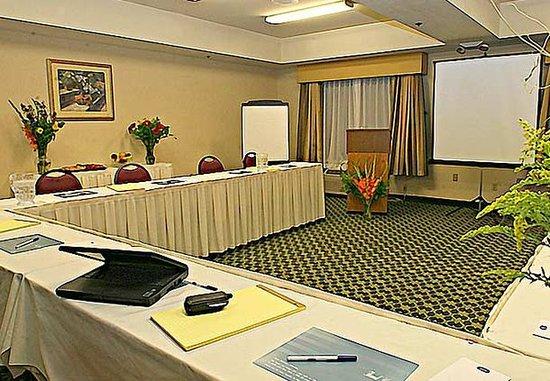 Salida, CA: Meeting Room
