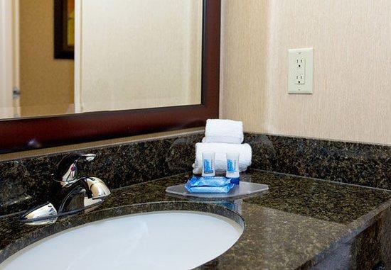 ลิโวเนีย, มิชิแกน: Suite Bathroom Amenities