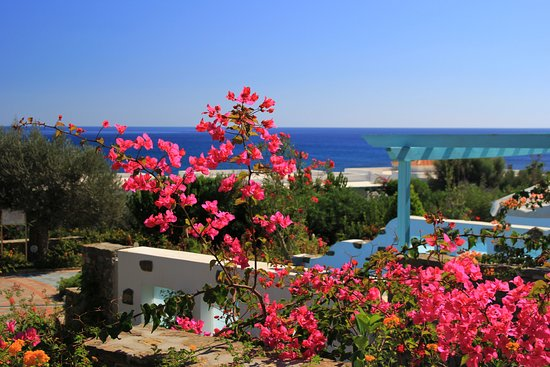 Lachania, Grecia: sun, sea and flora