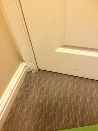 Model Of Holiday Inn Manchester West Dirty skirting door Luxury - Review door skirting New