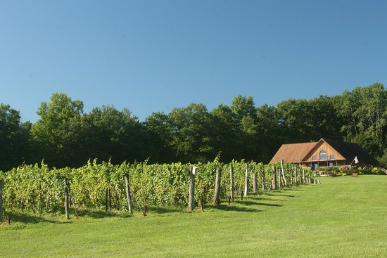 Romulus, NY: Vineyards and Tasting Room