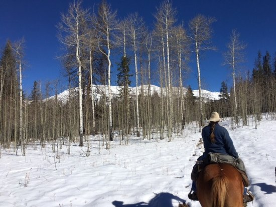 Pinedale, WY: Trail Ride