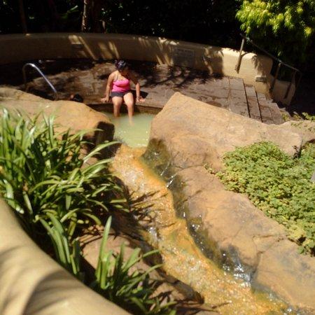 Caledon, Sudáfrica: IMG-20161024-WA0008_large.jpg