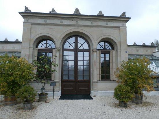 Orangerie - Picture of Merian Garten, Basel - TripAdvisor