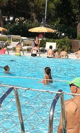 Perle d'Acqua Park: 20160901_114518_large.jpg