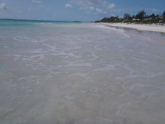 Pink sand beach from the pink sand resort picture of for Pink sands beach in harbour islands