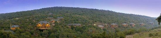 Zdjęcie Welgevonden Game Reserve