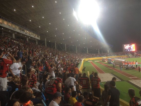Pedro Ludovico Olympic Stadium