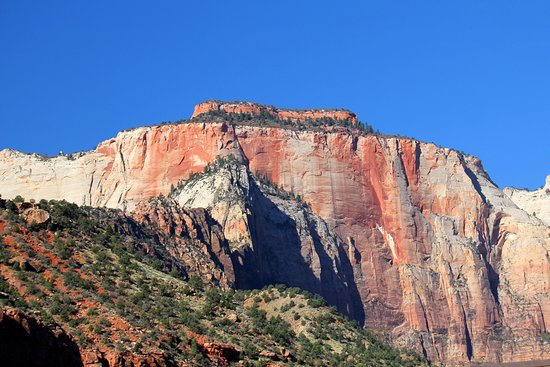 Bundu Bashers Private Day Tours: Zion