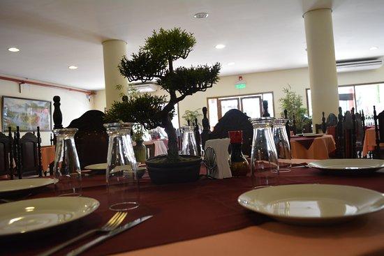 Sal n climatizado con rea de wifi para un total de 150 for Areas de un restaurante