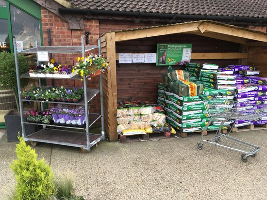 Garden Centre: Frozen-Yorkshire-puddings-and-Roast-Potatoes