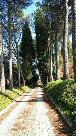 Villa Osperellone : IMG-20161027-WA0001_large.jpg