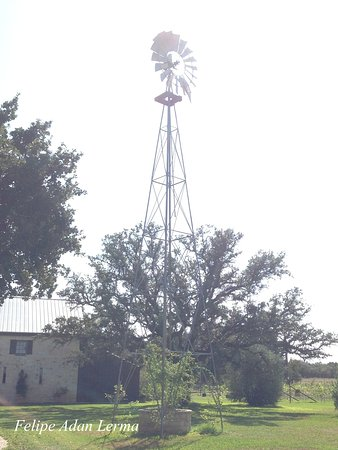 Stonewall, TX: Tall windmill casting twirling shadows on grassy courtyard outside Becker Vineyards.