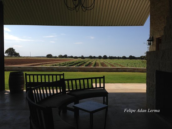 Stonewall, TX: One of many shaded sitting areas outside the tasting room at Becker Vineyards.