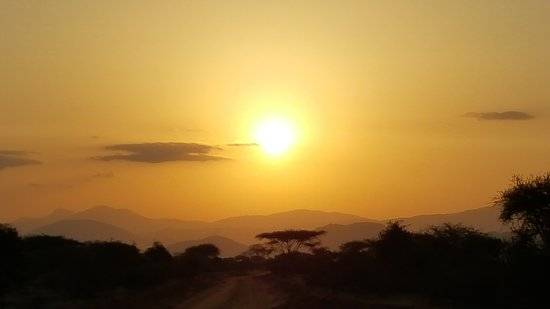 Big Kenya Tours and Safaris