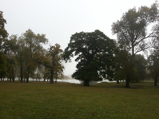 Woburn Abbey and Gardens: 20161027_100343_large.jpg