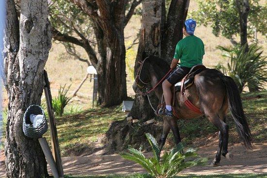 Samambaia, DF: Delicioso Passeio à cavalo