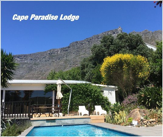 Cape Paradise Lodge and Apartments: Pool mit Blick zum Tafelberg