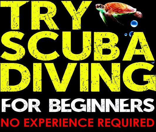 Try Scuba Diving - Puerto Rico
