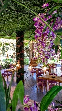 Yautepec, Mexico: Servicio de excelencia en un ambiente agradable y confortable