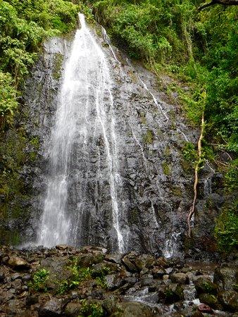 Kaneohe, HI: Hamama Falls