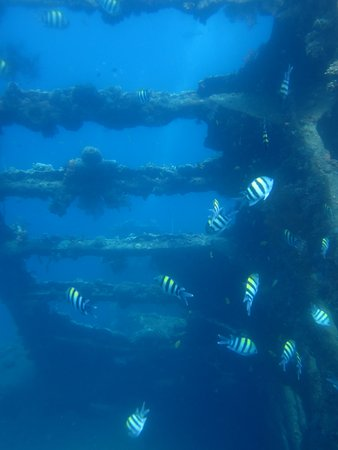Tulamben, Indonesia: part of the wreck
