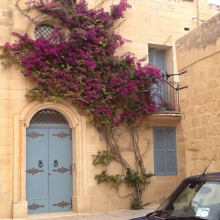 Dragonara Apartments: photo0.jpg