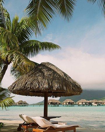 Four Seasons Resort Bora Bora: Beach - lounge chairs