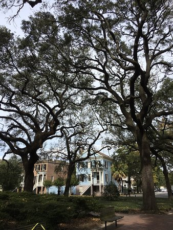 Grits & Magnolias Walking Tours : photo1.jpg