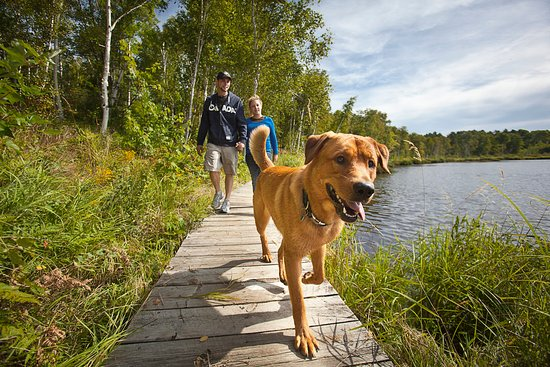 Sudbury, Canada: Lakes, trees, trails and fresh air, the Laurentian Conservation Area has them all!