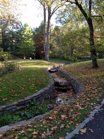 Wayne, Pensilvanya: stream through Asian garden October 2016