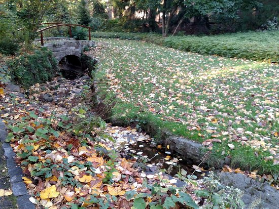 Wayne, Pensilvanya: Asian garden bridge and stream october 2016
