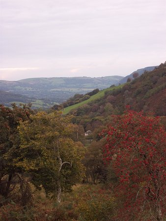 Carno, UK: This is the view from our walk, you can see the top of one of the yurts in the centre of the pic