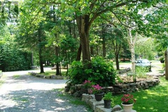 Bobcaygeon, Canadá: The neighbourhood which is very walkable.  Trails near by