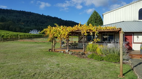 Philomath, Орегон: Cardwell Hill Cellars vineyards, deck, and attached tasting room