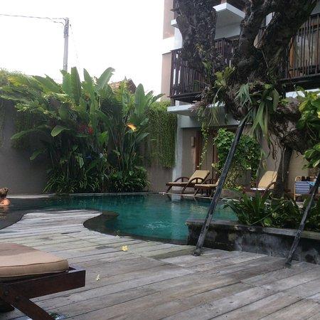 The Oasis Lagoon Sanur: Pool
