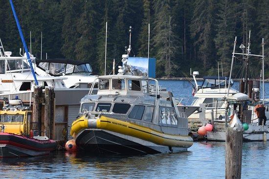 Port McNeill, Canadá: Niaid explorer