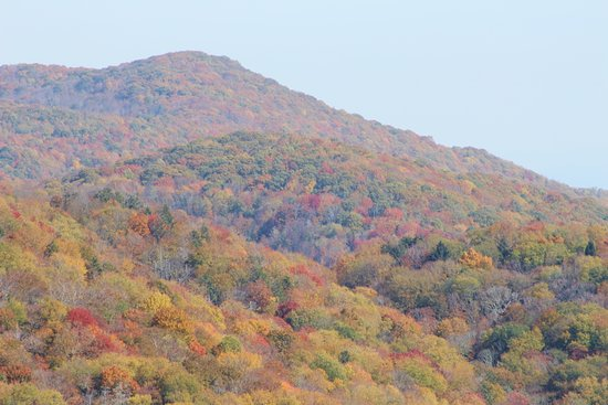 Tellico Plains, เทนเนสซี: Beautiful shot from Cherohala Skyway